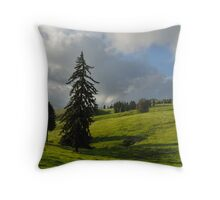 Three firs, Romania, Transylvania region  Throw Pillow