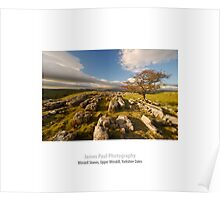 Limestone Pavement, Upper Winskill, Ribblesdale, Yorkshire Dales Poster