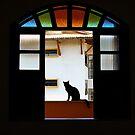 framed by Gillian Villa