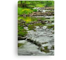 Rolling River Canvas Print
