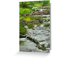 Rolling River Greeting Card