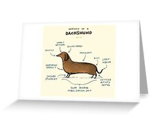 Anatomy of a Dachshund Greeting Card