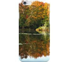 Fall Fantasy iPhone Case/Skin