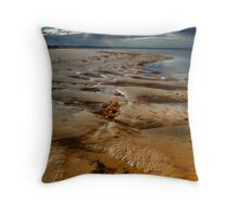 Sandpools Throw Pillow