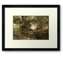 Up The Path Framed Print