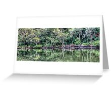 Pittwater Paradise Greeting Card