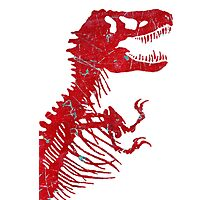 Rusty Rex Photographic Print