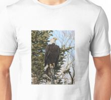 Bald Eagle 3 Unisex T-Shirt