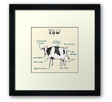 Anatomy of a Cow Framed Print