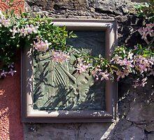 Wall Flower by biddumy