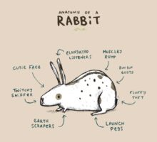 Anatomy of a Rabbit T-Shirt