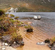 View from Dove Lake, Cradle Mountain, Tasmania, Australia. by kaysharp