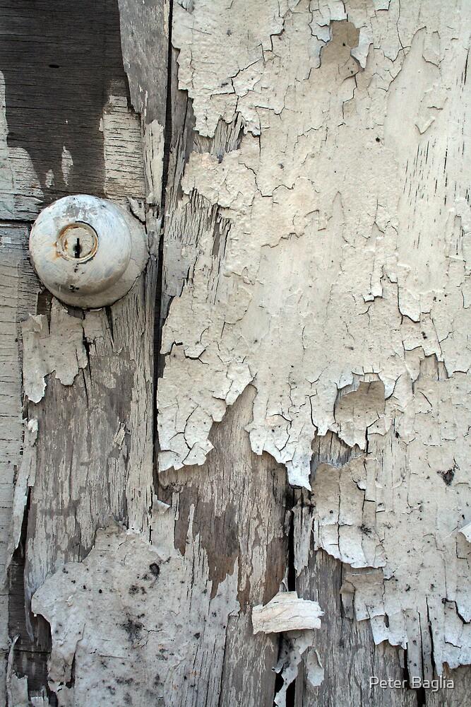 Old Door by Peter Baglia