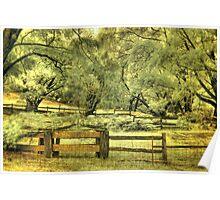 Donnelly River farm yard, Western Australia Poster