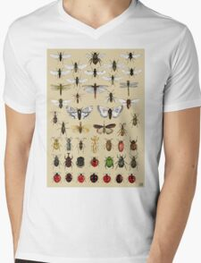 Entomology Insect studies collection  Mens V-Neck T-Shirt