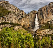Yosemite View by Barbara  Brown