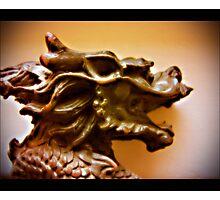 chinagon Photographic Print