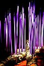 Purple Glass and Logs by Bob Wall
