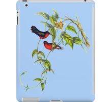 The buffy hummingbird (Leucippus fallax) iPad Case/Skin