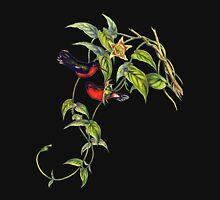 The buffy hummingbird (Leucippus fallax) T-Shirt