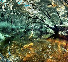 'Quiet Pool', Donnelly River, Western Australia by BigAndRed