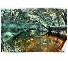 'Quiet Pool', Donnelly River, Western Australia Poster