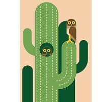 Burrowing owls and cacti vector illustration Photographic Print