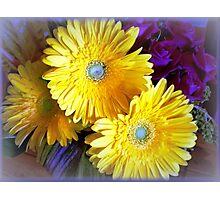 Chrysanthemums - Always delightful Photographic Print