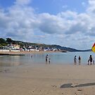 A  day at the beach  Lyme Dorset UK by lynn carter