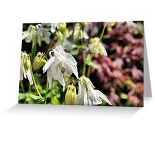 Tissue Paper Flowers Greeting Card