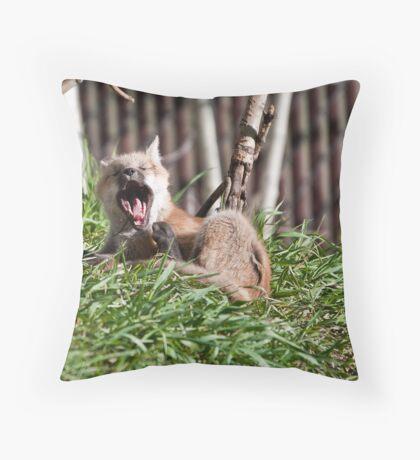 Scratch & Yawn Throw Pillow