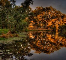 And His Ghost May Be heard #3 - Wonga Wetlands, Albury - The HDR Experience by Philip Johnson