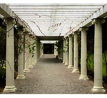 Everything in Columns Photographic Print