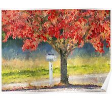 Blazing Bloody Red Dogwood By White Mailbox Poster