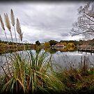 Lake Daylesford by Lisa  Kenny