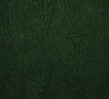 Leather Texture, Leather Background - Green by sitnica