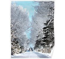 Hoar Frost Path Poster