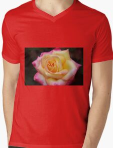 One Colorful Rose Mens V-Neck T-Shirt
