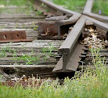 End of the Line by Lynn Armstrong