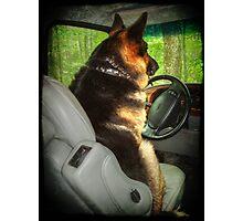 Designated Driver Photographic Print