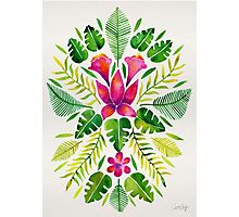 Tropical Symmetry – Pink & Green Photographic Print