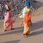 The walk by SuryaManohar