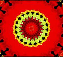11310 20 petals by Robert Breisch