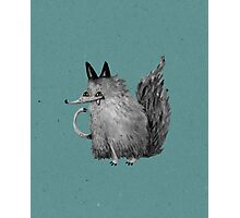 Cheeky Wolf Photographic Print