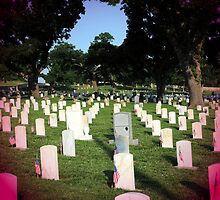 Memorial Day by Kathleen Struckle