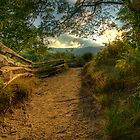 Graveyard Fields Sunset by Spencer Black