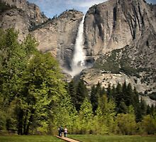 Through Yosemite Meadows by Barbara  Brown