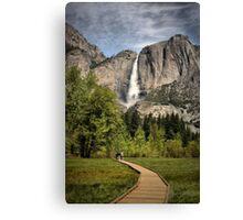 Through Yosemite Meadows Canvas Print