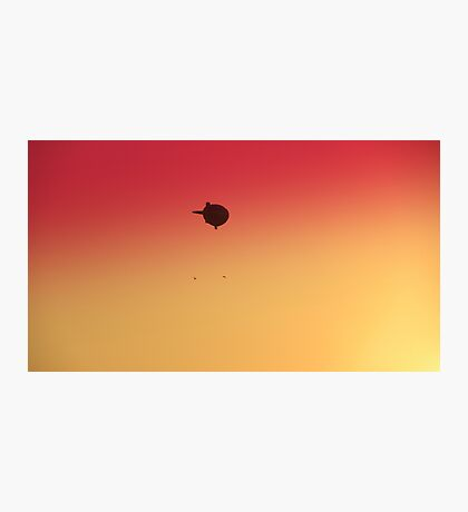 Birds following Zeppelin Photographic Print