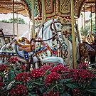 Carousel Horses by Colleen Drew